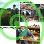 the political economy of food